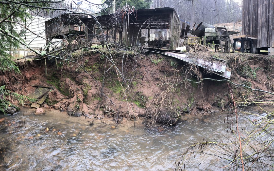 Request for proposals for Adams Creek stream restoration